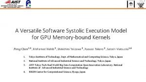A Versatile Software Systolic Execution Model for GPU