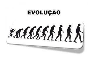 EVOLUO A Teoria da Evoluo busca explicar o