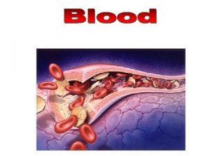 Artery White blood cells Platelets Red blood cells