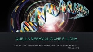 QUELLA MERAVIGLIA CHE IL DNA NON SA NULLA