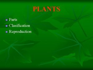 PLANTS n n n Parts Clasification Reproduction Parts