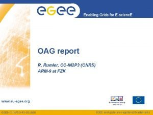 Enabling Grids for Escienc E OAG report R