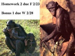 Homework 2 due F 223 Bonus 1 due