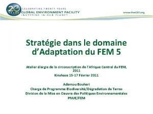 Stratgie dans le domaine dAdaptation du FEM 5