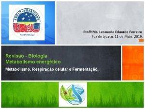 Prof Ms Leonardo Eduardo Ferreira Foz do Iguau