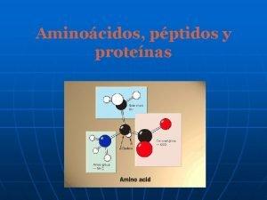 Aminocidos pptidos y protenas Protenas Las protenas se