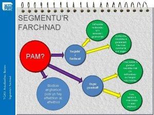 SEGMENTUR FARCHNAD Segmentur Farchnad TGAU Astudiaethau Busnes PAM