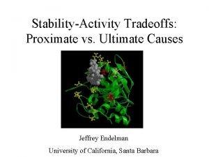 StabilityActivity Tradeoffs Proximate vs Ultimate Causes Jeffrey Endelman