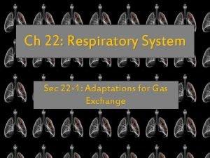 Ch 22 Respiratory System Sec 22 1 Adaptations