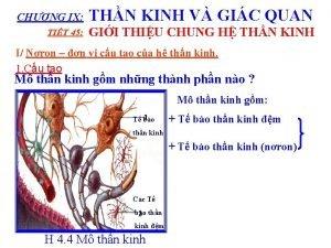 CHNG IX THN KINH V GIC QUAN TIT