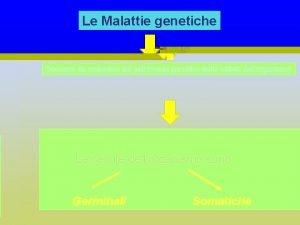 Le Malattie genetiche Derivano da mutazioni del patrimonio