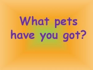 What pets have you got Listen look and