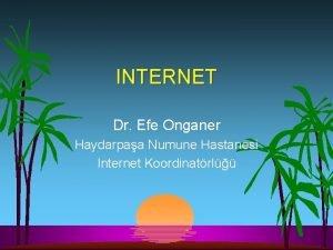 INTERNET Dr Efe Onganer Haydarpaa Numune Hastanesi Internet