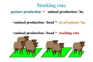 Stocking rate pasture production animal production ha animal
