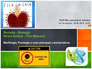 Prof Ms Leonardo E Ferreira Foz do Iguau