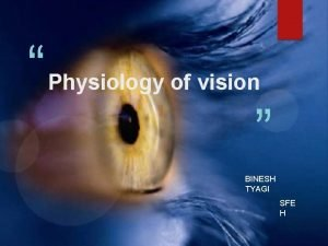 Physiology of vision BINESH TYAGI SFE H Main