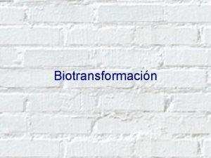 Biotransformacin Mecanismos de Detoxificacin 1 2 Mecanismos de
