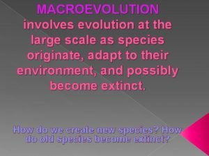 MACROEVOLUTION involves evolution at the large scale as
