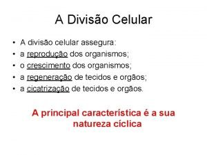 A Diviso Celular A diviso celular assegura a