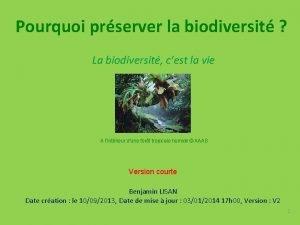 Pourquoi prserver la biodiversit La biodiversit cest la