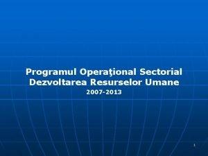 Programul Operaional Sectorial Dezvoltarea Resurselor Umane 2007 2013