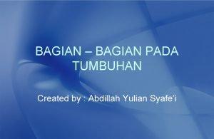 BAGIAN BAGIAN PADA TUMBUHAN Created by Abdillah Yulian