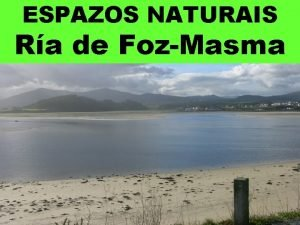 ESPAZOS NATURAIS Ra de FozMasma Incle o curso