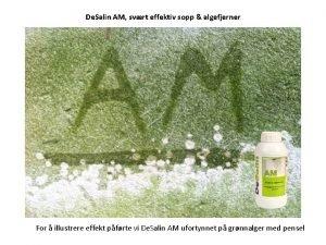 De Salin AM svrt effektiv sopp algefjerner For