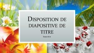 DISPOSITION DE DIAPOSITIVE DE TITRE Soustitre DISPOSITION DENTTE