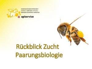 Rckblick Zucht Paarungsbiologie Rckblick Zucht Seit Mitte des