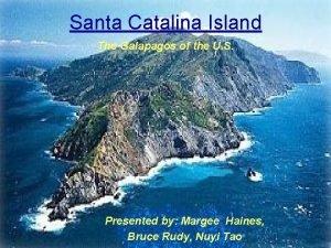 Santa Catalina Island The Galapagos of the U