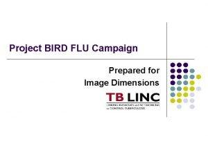 Project BIRD FLU Campaign Prepared for Image Dimensions
