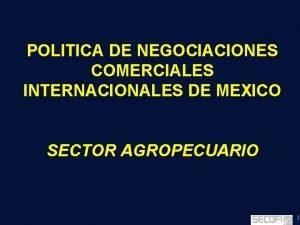 POLITICA DE NEGOCIACIONES COMERCIALES INTERNACIONALES DE MEXICO SECTOR