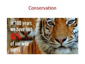Conservation Biodiversity the magic of our planet Biodiversity