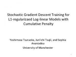 Stochastic Gradient Descent Training for L 1 regularizaed