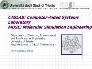 CASLAB ComputerAided Systems Laboratory MOSE Molecular Simulation Engineering
