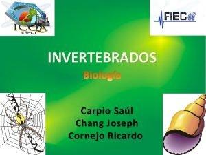 INVERTEBRADOS Carpio Sal Chang Joseph Cornejo Ricardo INVERTEBRADOS