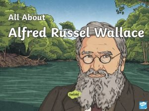 Who Was Alfred Russel Wallace Alfred Russel Wallace