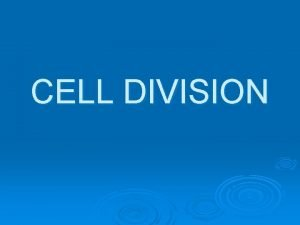 CELL DIVISION Cell Division One cell Two identical