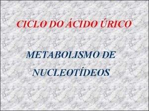 CICLO DO CIDO RICO METABOLISMO DE NUCLEOTDEOS Os
