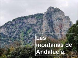 Las montaas de Andaluca Las montaas de Andaluca