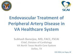 Endovascular Treatment of Peripheral Artery Disease in VA