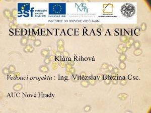 SEDIMENTACE AS A SINIC Klra hov Vedouc projektu
