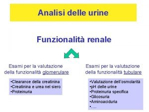Analisi delle urine Funzionalit renale Esami per la