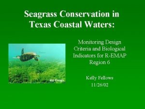 Seagrass Conservation in Texas Coastal Waters Monitoring Design