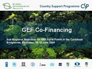 GEF CoFinancing SubRegional Workshop for GEF Focal Points