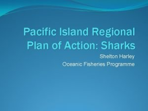 Pacific Island Regional Plan of Action Sharks Shelton