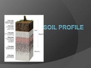 SOIL PROFILE Soil genetic horizons HORIZON soil layer