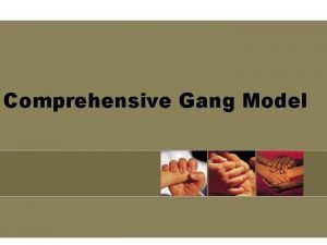 Comprehensive Gang Model Goals of the OJJDP Comprehensive