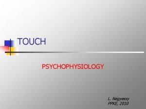 TOUCH PSYCHOPHYSIOLOGY L Ngyessy PPKE 2010 Haptic exploration